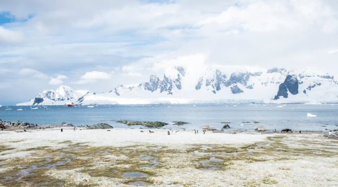Surreal Antarctica