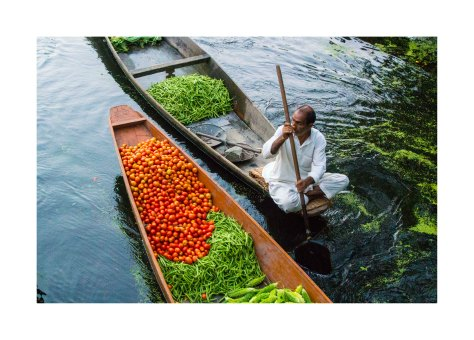 Srinagar_floating_market